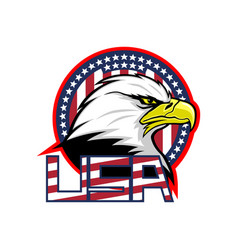 Badge with american eagle and usa flag vector