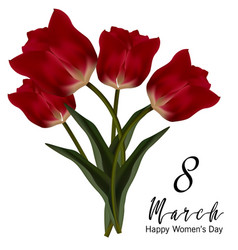 beautiful realistic tulip bouquet vector image
