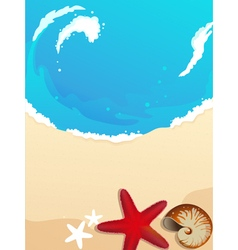 Sandy coast with starfish and cockleshell vector