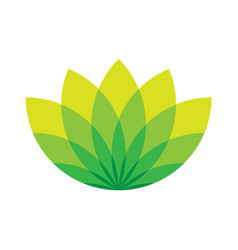 green lotus icon - wellness beauty and spa theme vector image