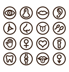 Medical line icon vector image