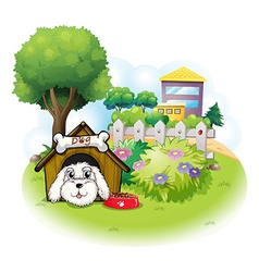 A white puppy inside a doghouse vector