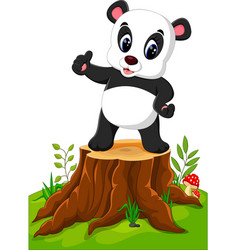 cartoon panda posing on tree stump vector image