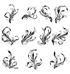 collection of curl floral graphic with spir vector image