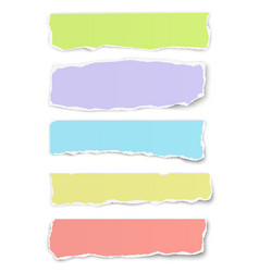 collection of oblong torn different colors paper vector image