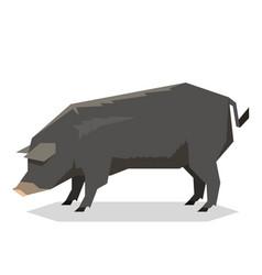 flat geometric mulefoot pig vector image