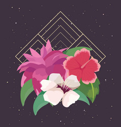 floral arrangement flowers foliage dark background vector image