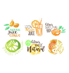 fresh natural citrus juice labels set hand drawn vector image