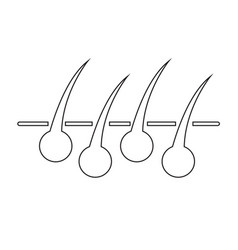 hair icon vector image