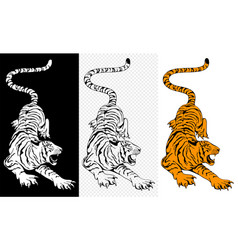 hunting tiger characters set vector image