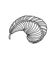 hand drawn feather vector image
