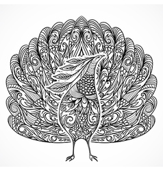 peacock vintage fantasy bird with ornament vector image