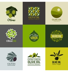 Set of labels and emblems with olive branch vector image vector image
