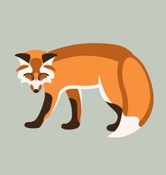 fox flat style profile vector image