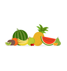 juicy fruit and berries vector image