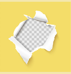 Torn paper hole with paper curl and ripped edges vector