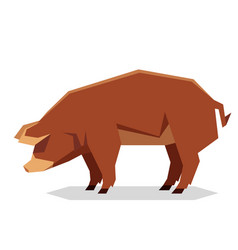 Flat geometric red wattle pig vector