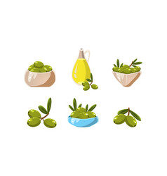 green olives and oil set healthy organic product vector image
