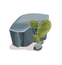 grey stones and cactus landscape design element vector image