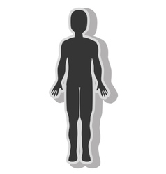 Male body silhouette vector image