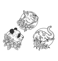 Panda elephant bulldog head animal sketch vector