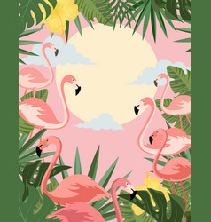 Summer banner with flamingo vector