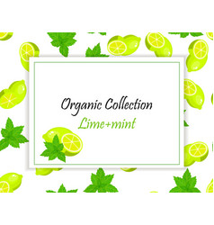 sweet juicy whole and slice lemon and mint vector image vector image