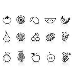fruit outline icons set vector image vector image