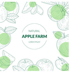 apple farm banner template with organic natural vector image