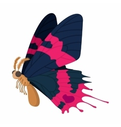Dark blue-pink butterfly icon cartoon style vector