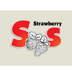 Fruits and vegetables alphabet - letter S vector image