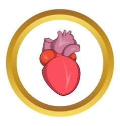 Heart human icon vector image