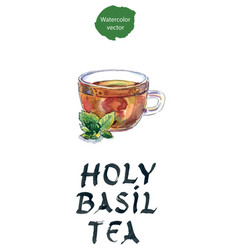 cup of herbal tea with green tulsi leaves vector image vector image