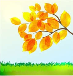 landscape with Autumn leaves vector image vector image