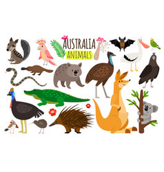 Australian animals animal icons of vector