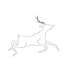deer drawing lines vector image