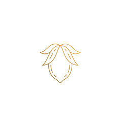 design lemon with leaves hand drawn vector image