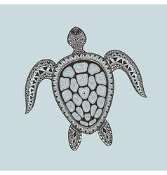 Entangle stylized turtle hand drawn aquatic vector