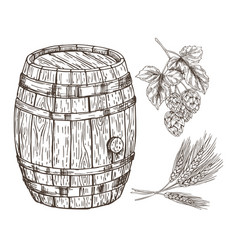 Raw set for beer reproduction with wooden barrel vector