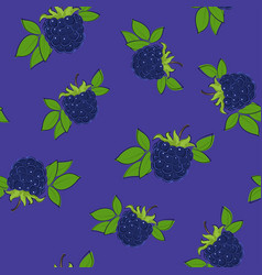 seamless pattern blackberry on purple background vector image