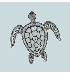 Zentangle stylized turtle Hand Drawn aquatic vector