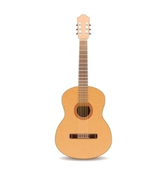 Guitar isolated on white background vector image