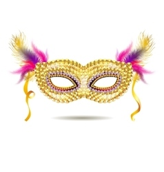 gold venetian carnival mask with feathers vector image