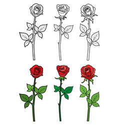 hand drawn ouline and red roses - flowers vector image