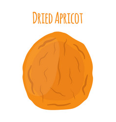 dried apricot in cartoon style vegetarian snack vector image