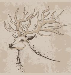 sketch a deer head with antlers vector image