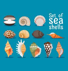 sea shells flat icons set vector image