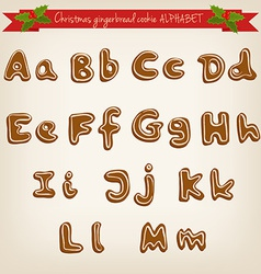 cute hand drawn Christmas gingerbread cookie vector image