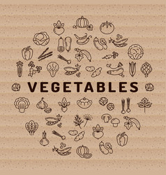 vegetable icon circle infographics thin line vector image vector image