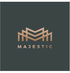 majestic abstract geometry minimal sign vector image vector image